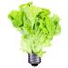 plant_lightbulb_75px