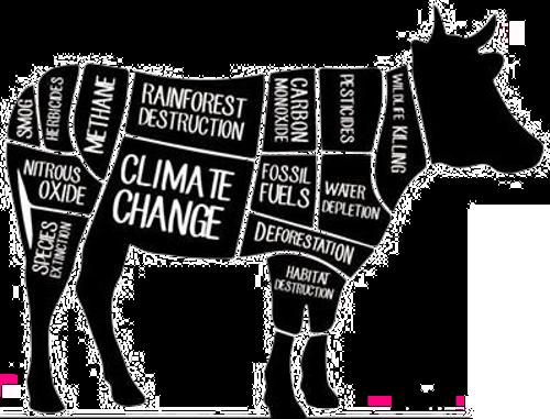 animal_climate change