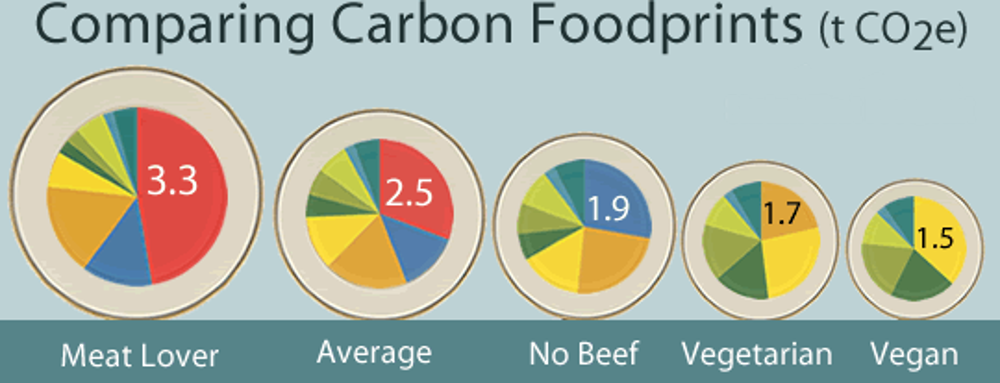 carbon footprint_1
